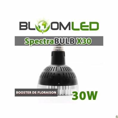 Spectra Bulb X30 - Floraled - E27